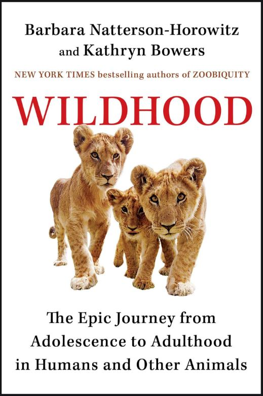 Jean's Pick of the Week: Wildhood: The Epic Journey from Adolescence to Adulthood in Humans and Other Animals